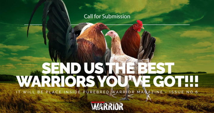 Call to submission: The Crowing Warriors
