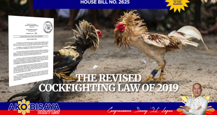 The Revised Cockfighting Law of 2019