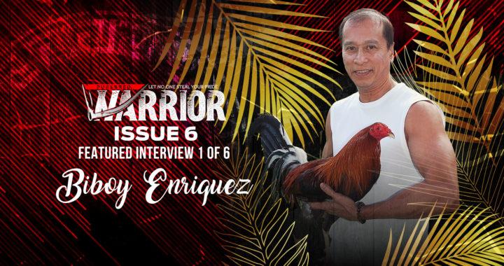 Interviewing Biboy Enriquez of Firebird Gamefarm