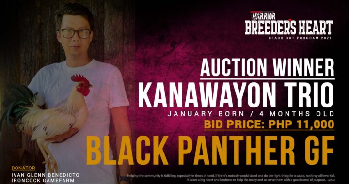 Breeders Heart Auction